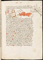 Bibliothèque, Ms 25, © e-codices